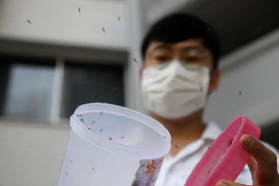 Temos o poder de pôr fim à emergência sanitária da dengue