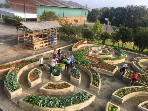 IMA lança Manual Horta Comunitária Sustentável